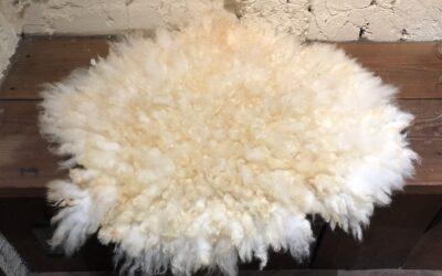 【玉川大学継続学習センター フェルト講座】春の毛刈り 羊のフリースフェルトラグ作り